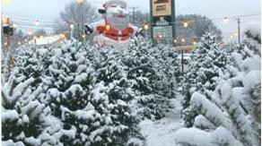christmas-story-tree
