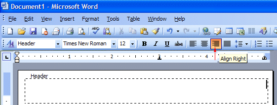 How do you format a typed essay on microsoft word 2003?