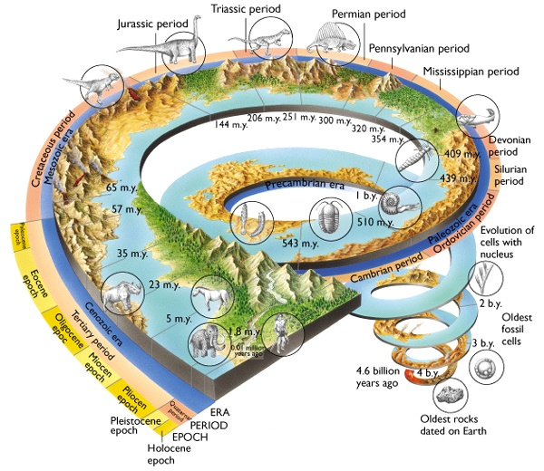 earths history and the mesozoic era essay The precambrian encompasses nearly 90% of earth's history, and almost a   paleozoic era (5420 to 2510 million years ago)  the time line at the bottom of  the mural will lead to illustrated essays for each geological period.